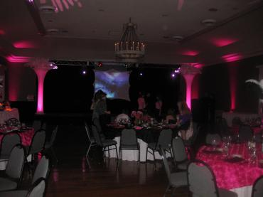 Spandex Screen and Truss Video/Lighting 2