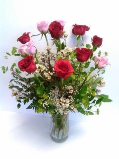 Roses - Mixed Dozen