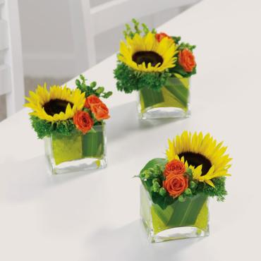 3pcs - Sunflower Breakaway