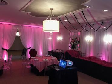 Bridal Shower Decor Draping