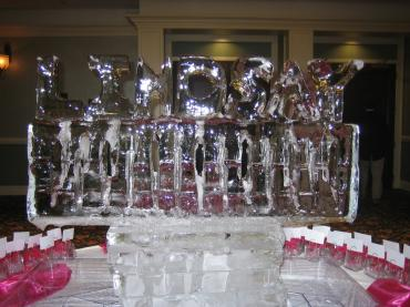 Custom Ice Sculpture 5